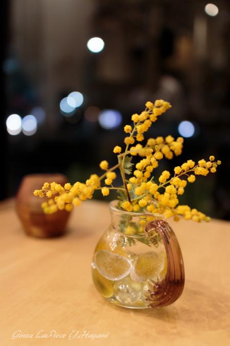 花のある風景 黄色のミモザ_b0133053_031838.jpg