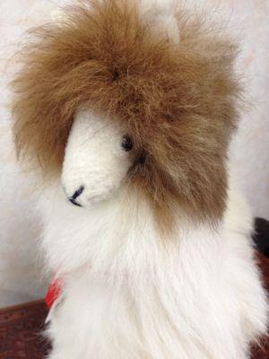 贈り物に、アルパカの毛でできたぬいぐるみはいかがですか?_d0187468_1649507.jpg