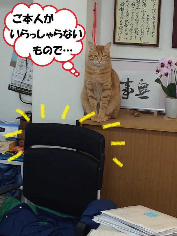 ふさふさ・・・再び_c0226073_1852339.jpg