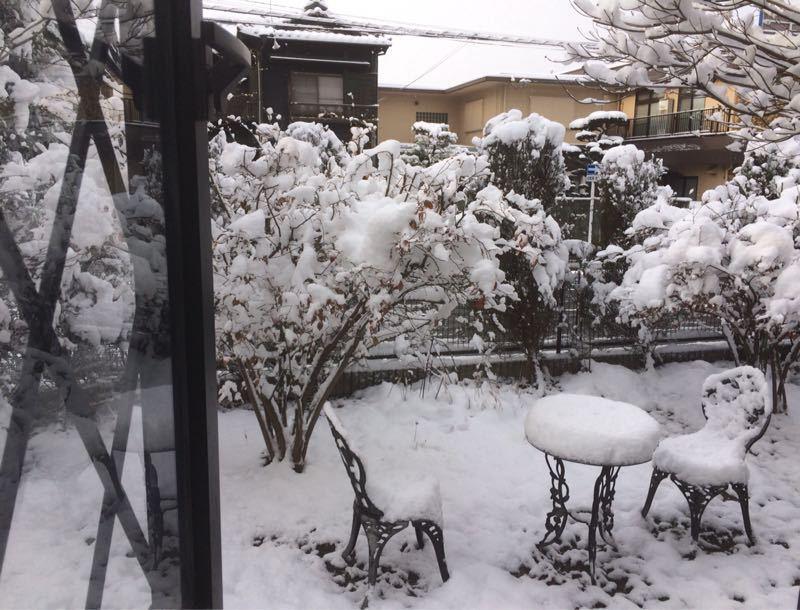 雪が降りました(^^)_e0233674_7342054.jpg