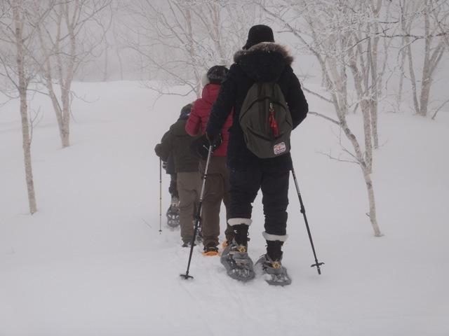 Nature /  Hokkaido_b0195093_09154825.jpg