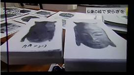 NHK首都圏ネットワークで放送されました!_a0268618_11475234.jpg