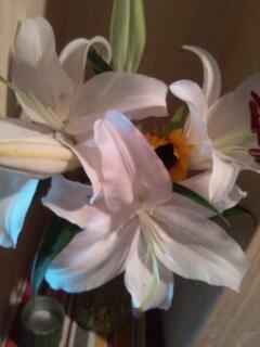 3月11日~当時、来日してくれたアーティスト_f0008555_18312597.jpg