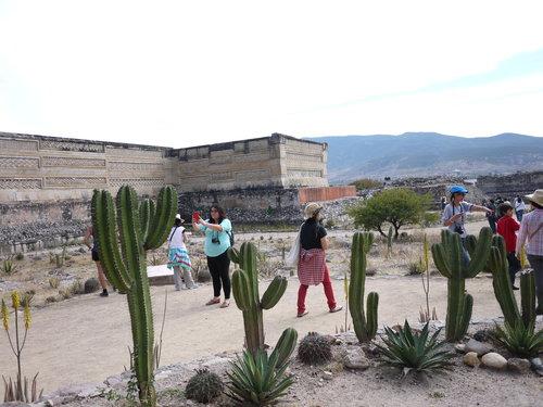 Mexico-24._c0153966_17551926.jpg