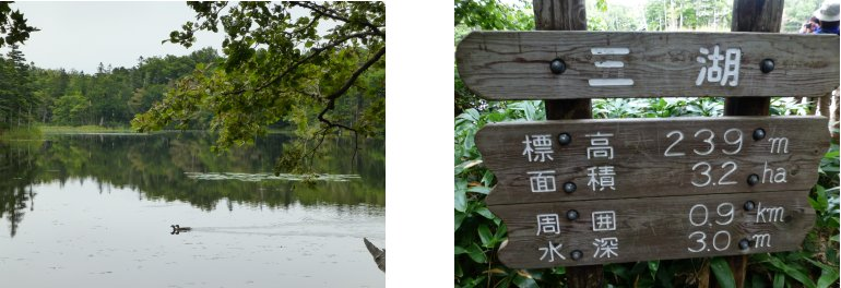 北海道編(23):知床五湖(13.9)_c0051620_6284975.jpg