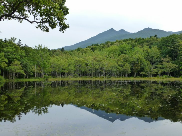 北海道編(23):知床五湖(13.9)_c0051620_6312394.jpg