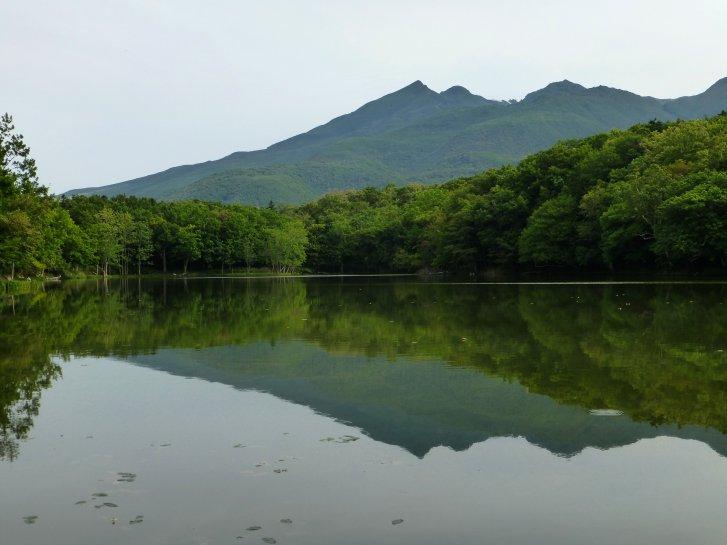 北海道編(23):知床五湖(13.9)_c0051620_6321052.jpg