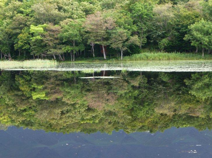 北海道編(23):知床五湖(13.9)_c0051620_6325138.jpg