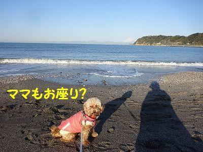 ご先祖様からのお宝_e0222588_16441211.jpg