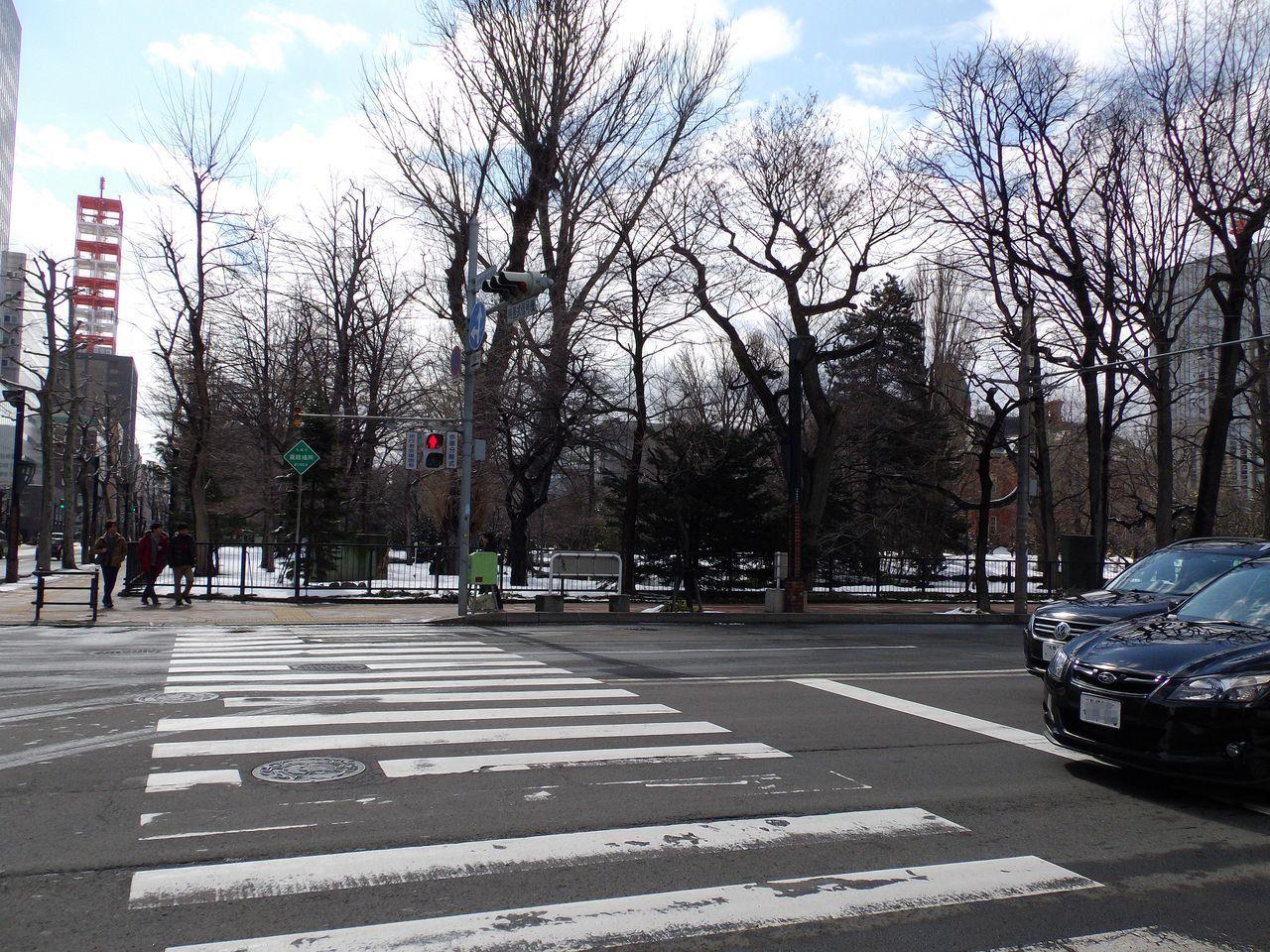 冬と春が同居する札幌_c0025115_21410147.jpg