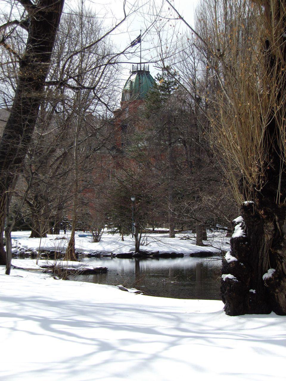 冬と春が同居する札幌_c0025115_21410950.jpg