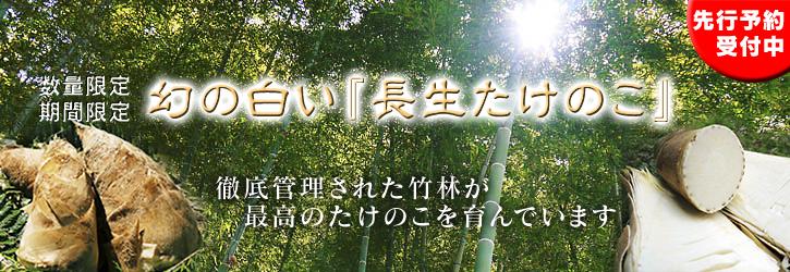 幻の白い「長生たけのこ」 平成27年度予約受付スタート!!_a0254656_14532879.jpg