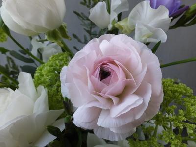 オークリーフ(お悔やみの花、春の草花で・・)_f0049672_11373577.jpg