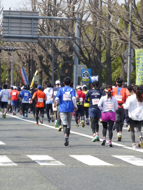 横浜マラソン2015 応援_e0237625_2212370.jpg