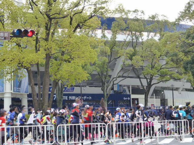横浜マラソン2015 応援_e0237625_2222958.jpg