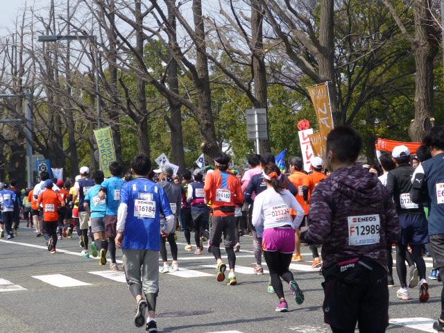 横浜マラソン2015 応援_e0237625_2235669.jpg