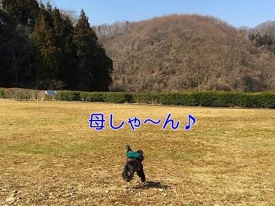 f0326925_17445024.jpg