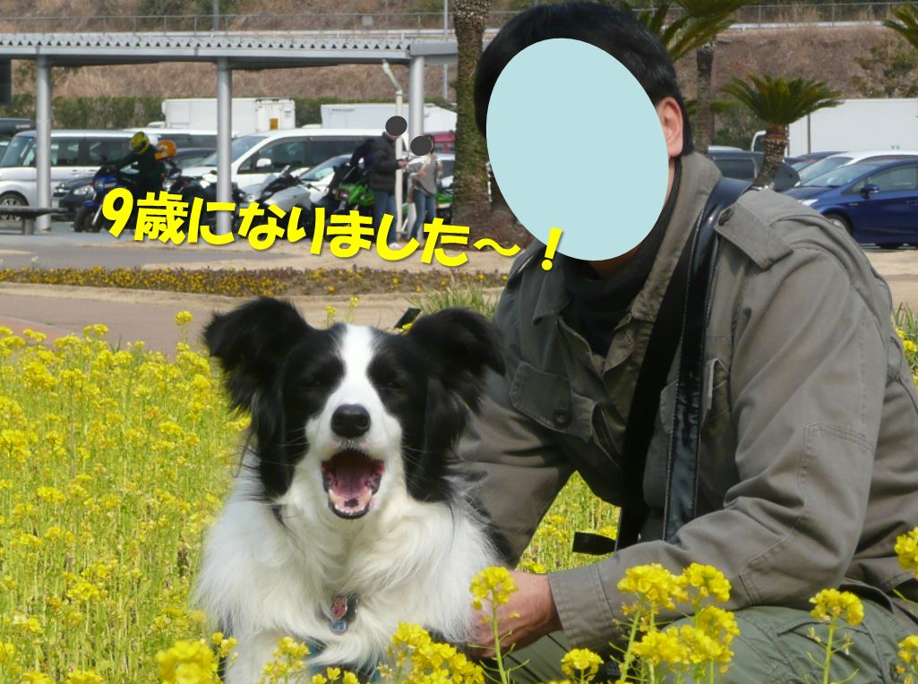 c0147241_12541447.jpg