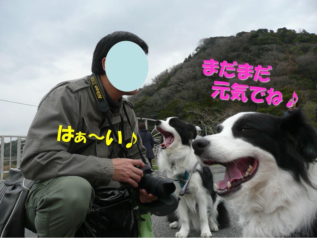c0147241_12552658.jpg