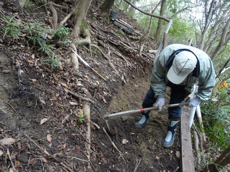 コクランの道作り本格的に始まった in うみべの森_c0108460_16310320.jpg