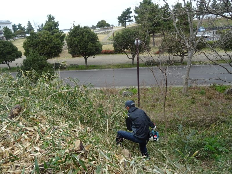 コクランの道作り本格的に始まった in うみべの森_c0108460_16310761.jpg