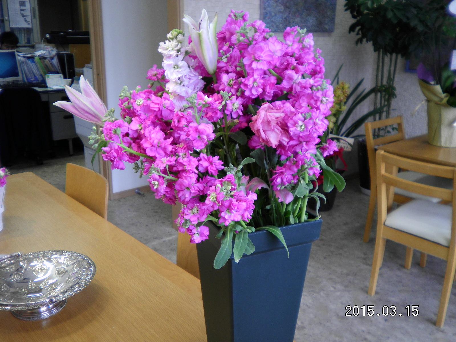 たくさんのお祝いのお花_e0190287_13261232.jpg