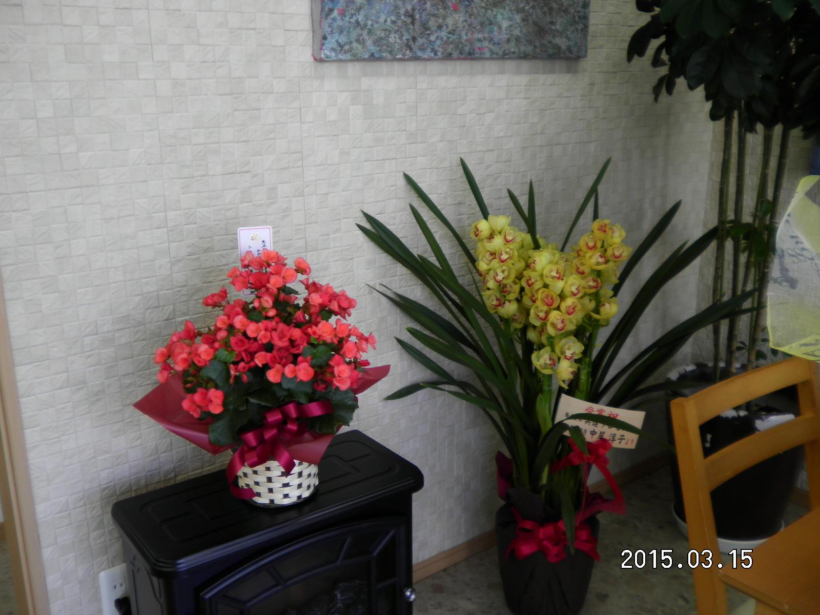 たくさんのお祝いのお花_e0190287_1422585.jpg