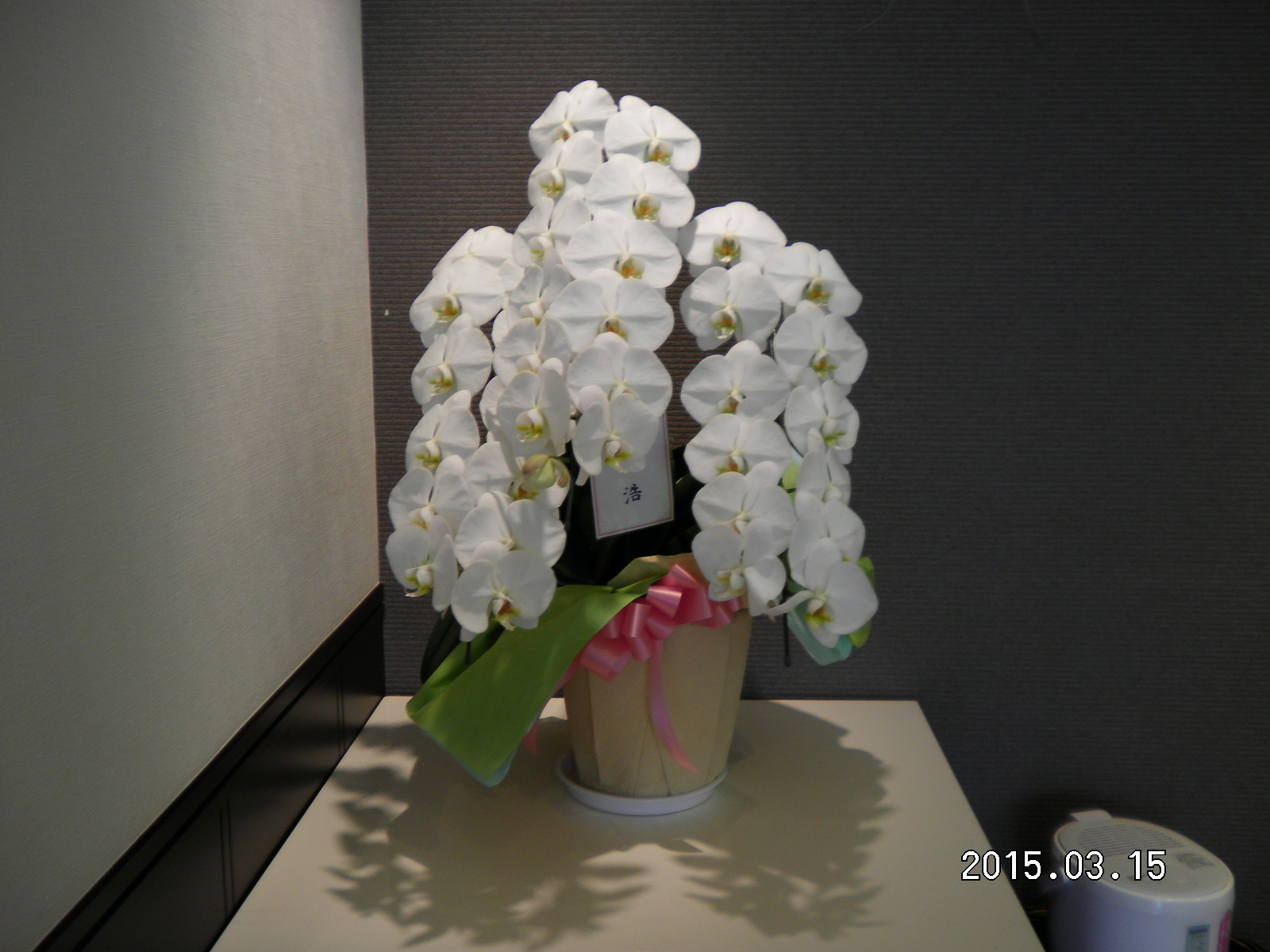たくさんのお祝いのお花_e0190287_1425712.jpg
