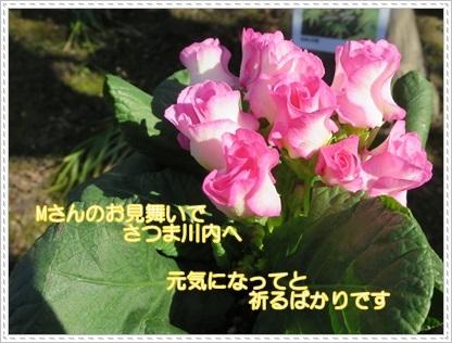d0018704_23041988.jpg