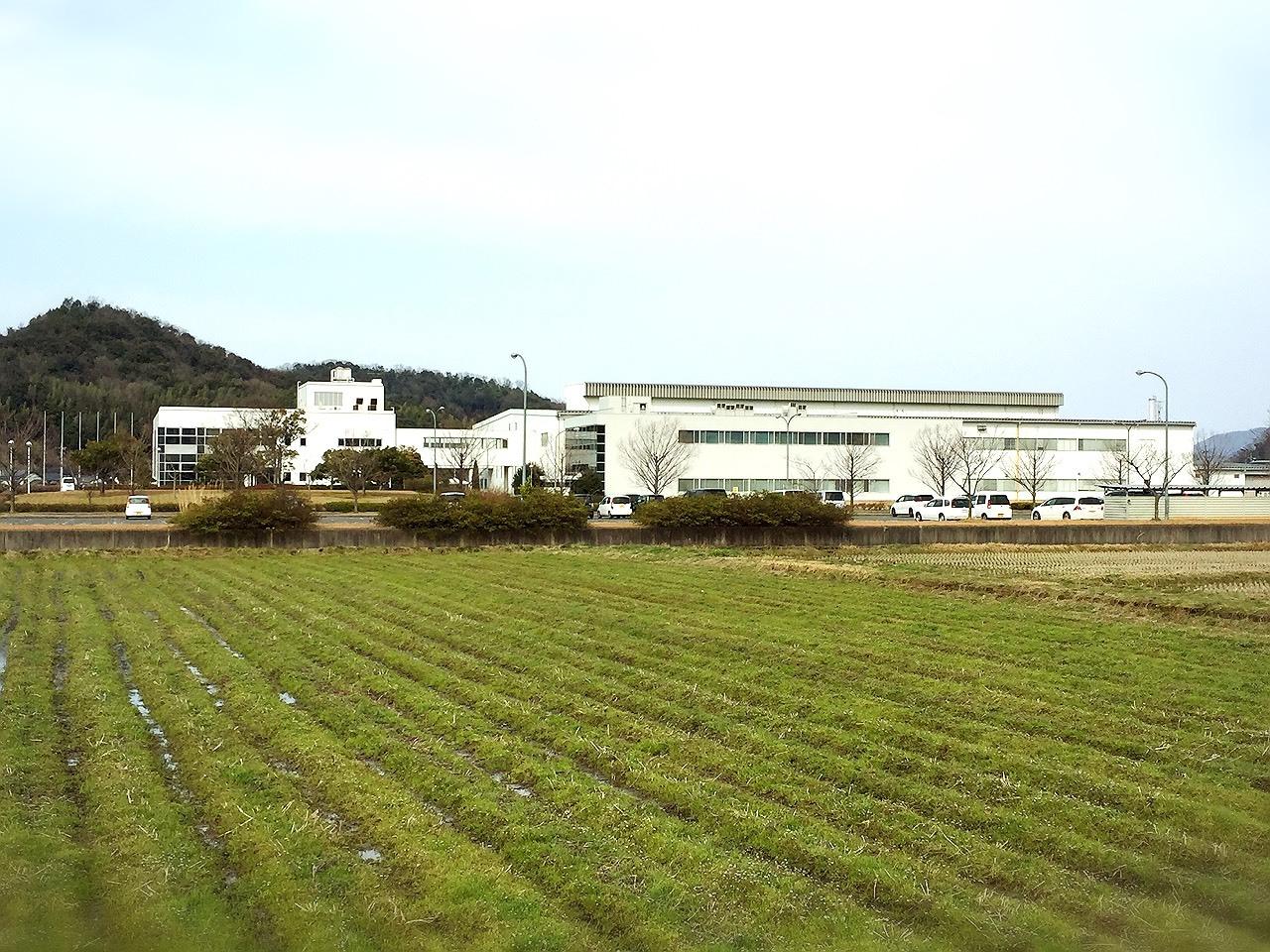 鳥取マラソン2015_e0115904_13453748.jpg