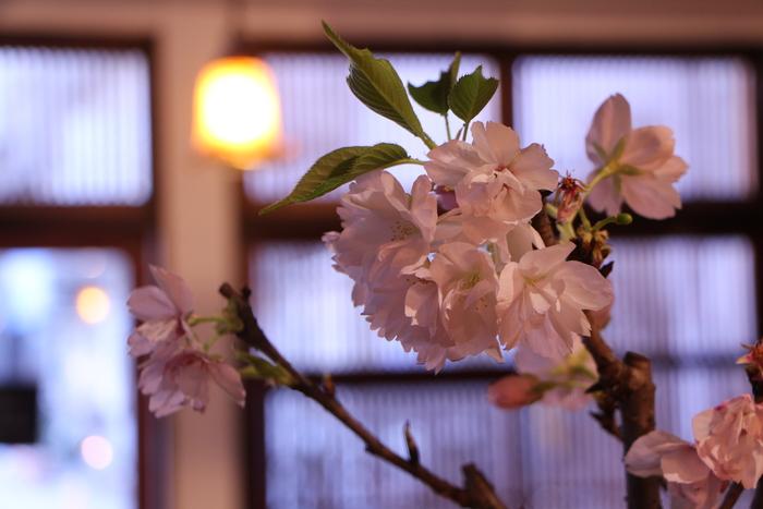 一歩 一歩と 春が。。。来る_d0150720_11341668.jpg