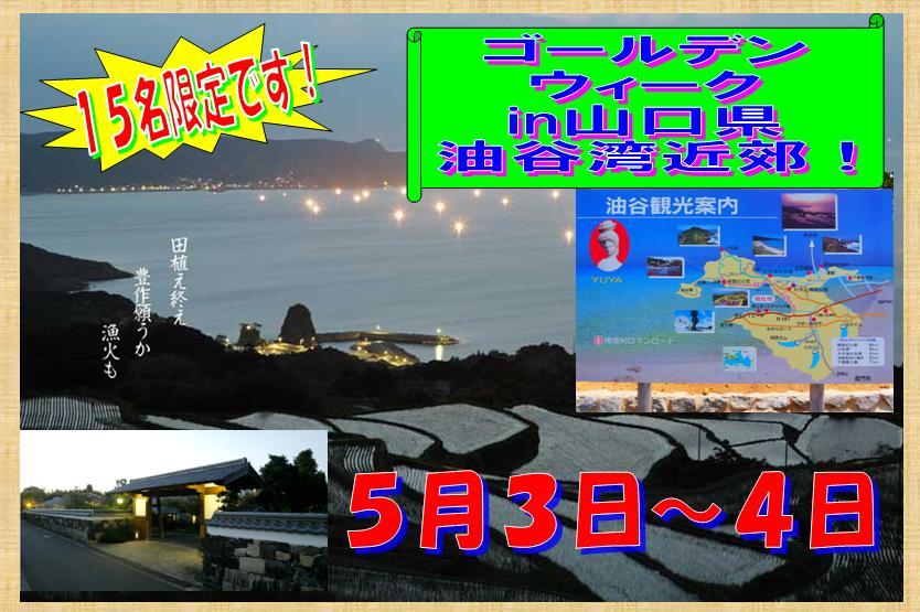 GW楽しみ~!ですやん!_f0056935_16231556.jpg