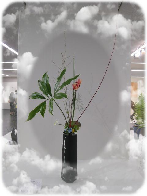 芸術フィスティバル会場から_b0189573_16572032.jpg