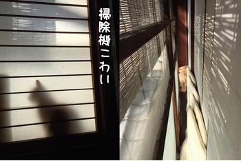 朝のお約束_f0340936_21491522.jpg