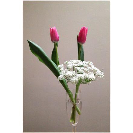 春をまろんに_e0293553_1211298.jpg