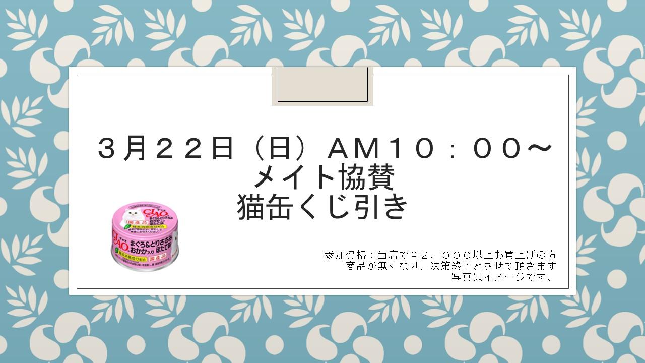 1503117 花金セール、イベント告知_e0181866_9145535.jpg