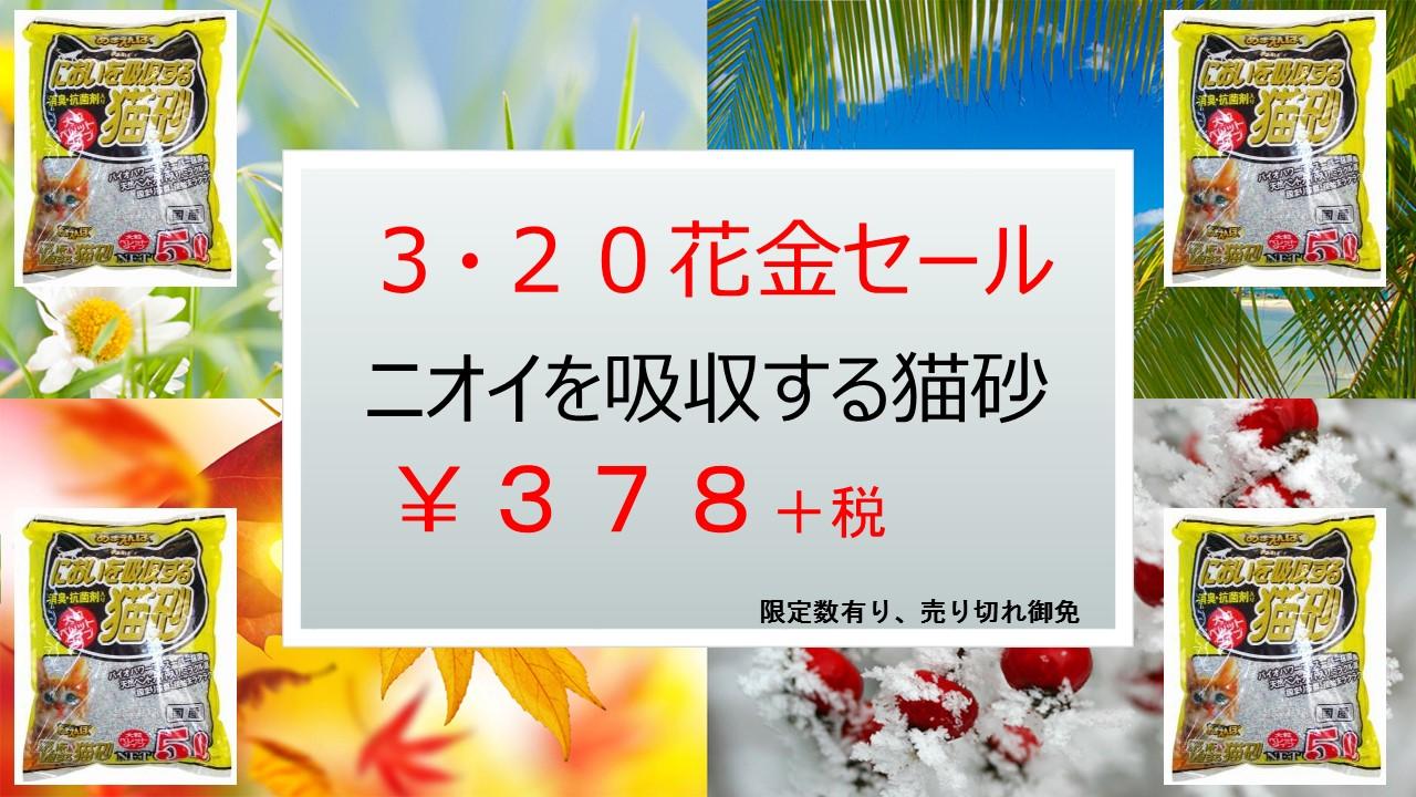 1503117 花金セール、イベント告知_e0181866_99327.jpg