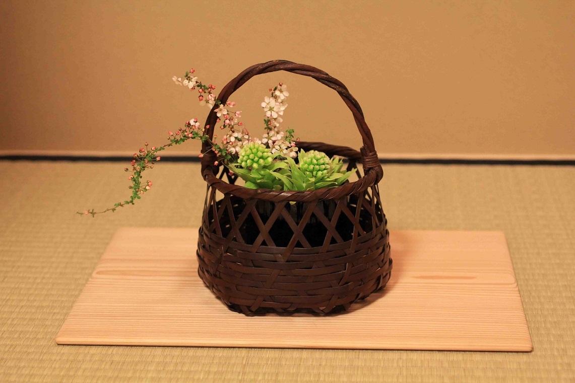 茶花  ~フキノトウ、ユキヤナギ~_a0107574_19592289.jpg