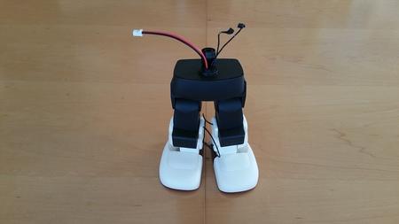 ロボット組み立て_c0193896_17593378.jpg