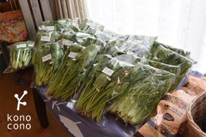 今日のお菓子とお野菜♪ かわいいお客様♪_f0321908_13551795.jpg