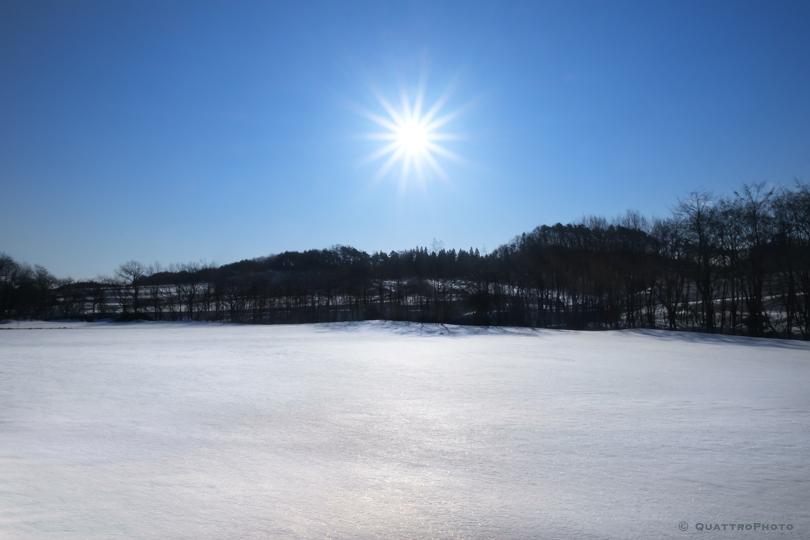 青森の雪景色_e0168232_943399.jpg