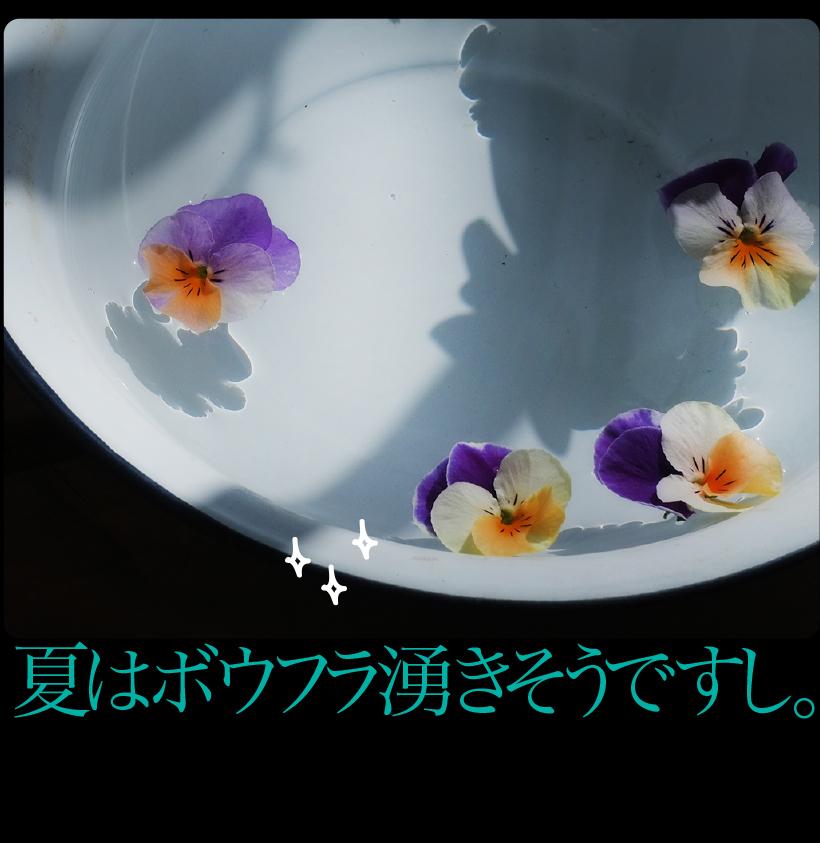 c0354952_22071459.jpg