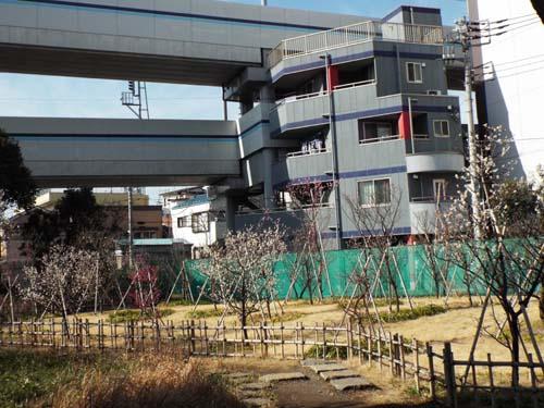 畠山記念館「THE琳派」展まで見たこと_f0211178_13145051.jpg