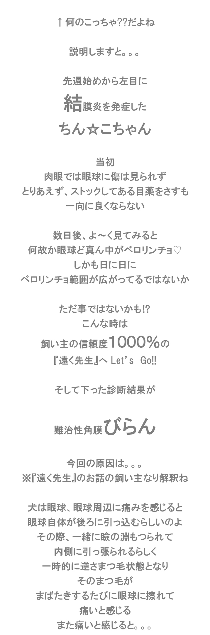 e0199784_10121671.jpg