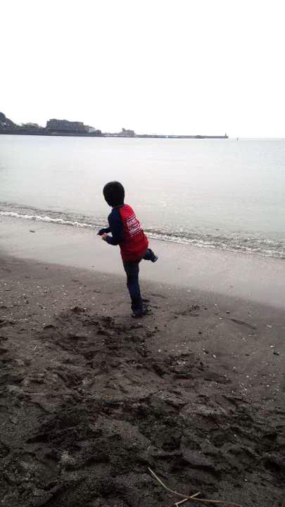 葉山コロッケのお弁当_b0171098_773153.jpg