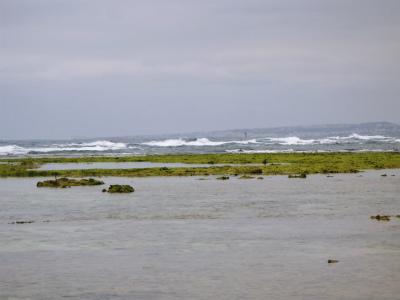 昼の海の散策②_c0180460_1629748.jpg