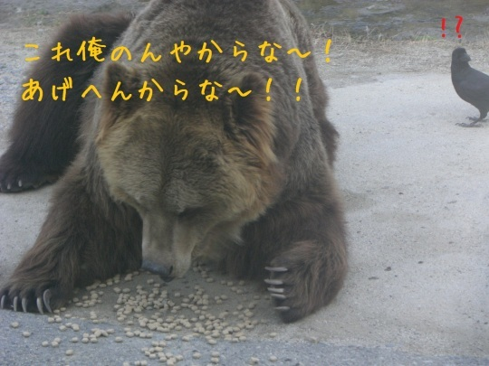 c0351693_23095137.jpg
