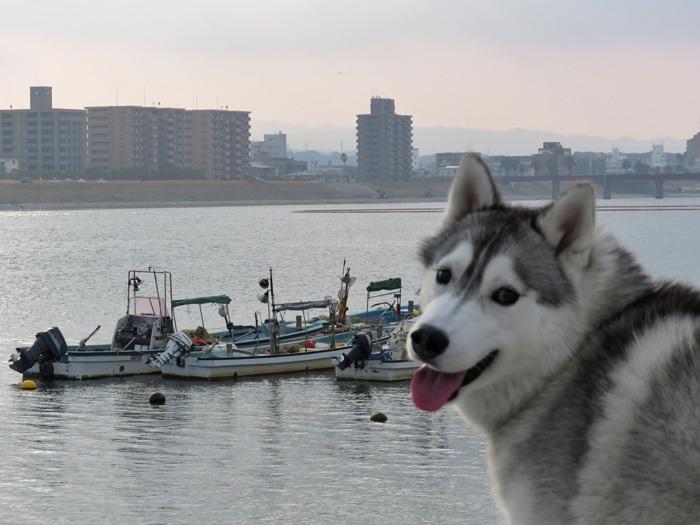 川っぷちはドラマチック♪ (^o^)_c0049299_2124671.jpg