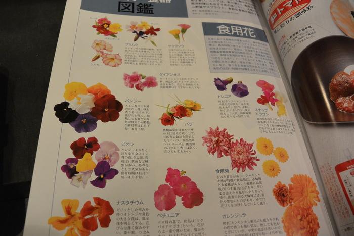 食用の花、いろいろあるんですねー。&3月23日(月)のランチメニュー_d0243849_0513778.jpg
