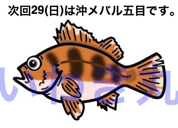 f0214557_18180465.jpg